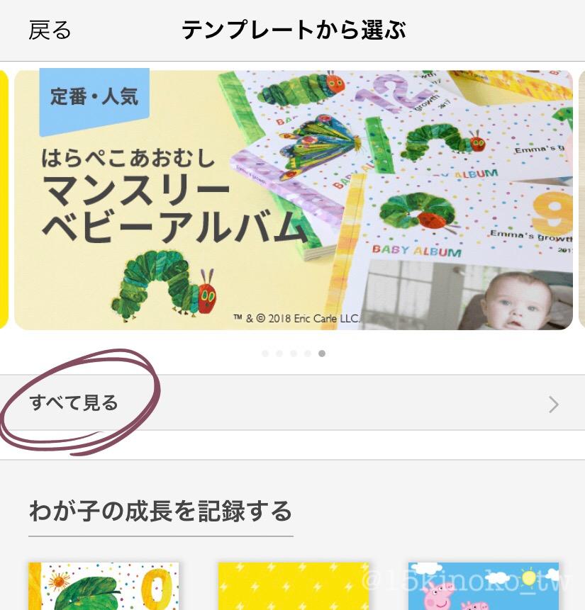f:id:ichigo_kinoko:20190226140400j:plain