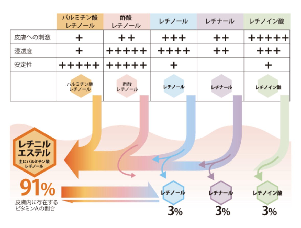 f:id:ichigobanachan:20200330185332j:plain