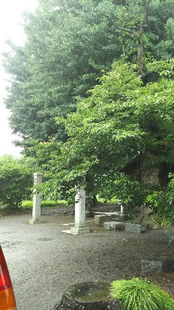 f:id:ichigobiyori:20170702192446j:plain