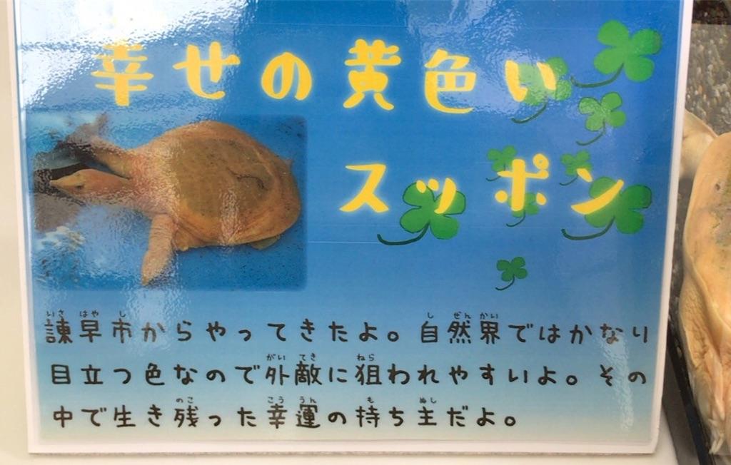f:id:ichigodaifuku01:20190603102820j:image