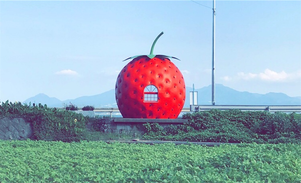 f:id:ichigodaifuku01:20190611225048j:image