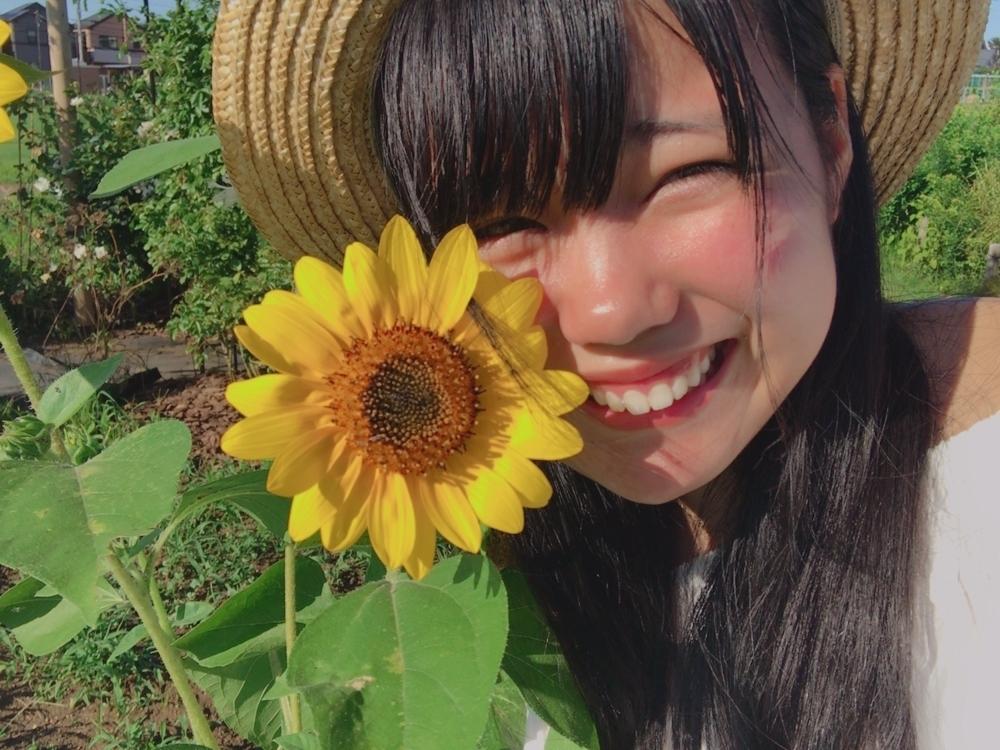 f:id:ichigodamasii:20170717190812j:plain