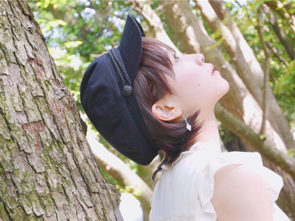 f:id:ichigodamasii:20181231105545j:image