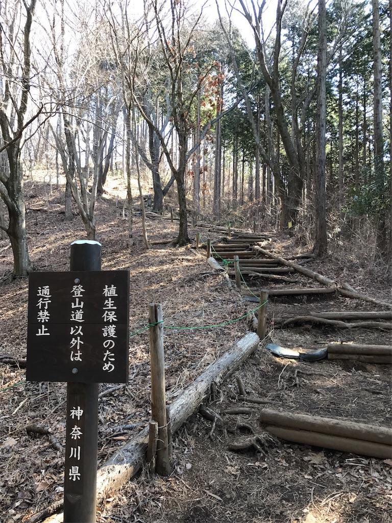 f:id:ichigokiwinassy:20170513181348j:image