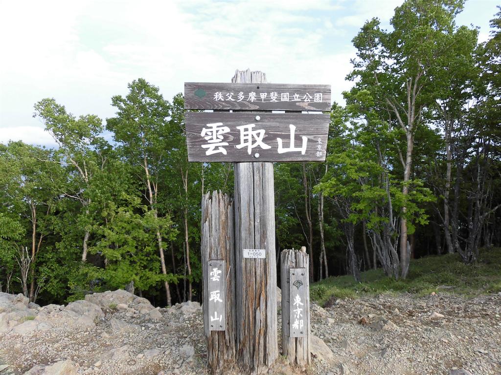 f:id:ichigokiwinassy:20170529212008p:image
