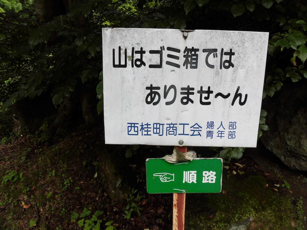 f:id:ichigokiwinassy:20170612024649p:image