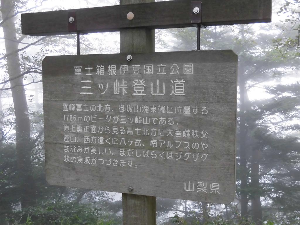 f:id:ichigokiwinassy:20170612030817p:image