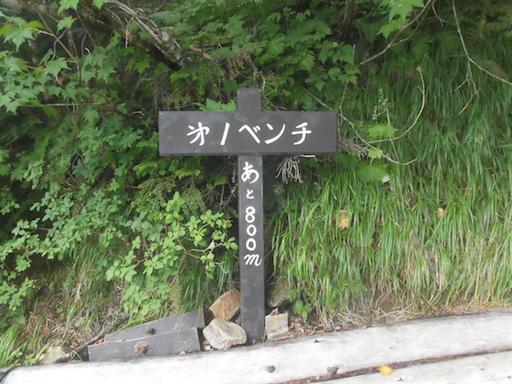 f:id:ichigokiwinassy:20170614155129p:image