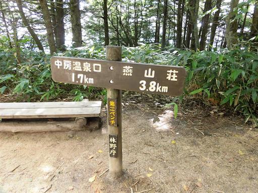 f:id:ichigokiwinassy:20170621181010p:image