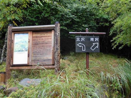 f:id:ichigokiwinassy:20170622144036p:image