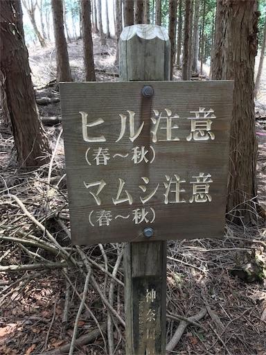 f:id:ichigokiwinassy:20170628122655j:image