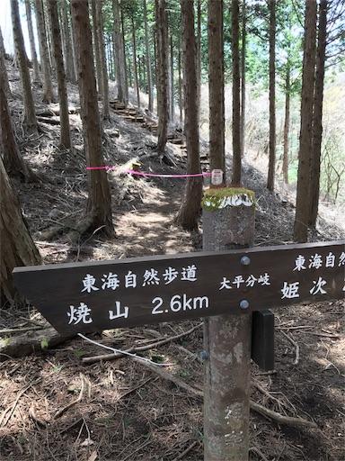 f:id:ichigokiwinassy:20170628122919j:image