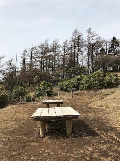 f:id:ichigokiwinassy:20170628130426j:image
