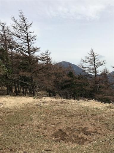 f:id:ichigokiwinassy:20170628130542j:image