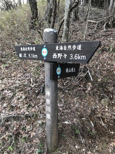 f:id:ichigokiwinassy:20170628132237j:image