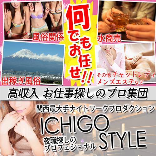 f:id:ichigostyle:20170512211814j:plain