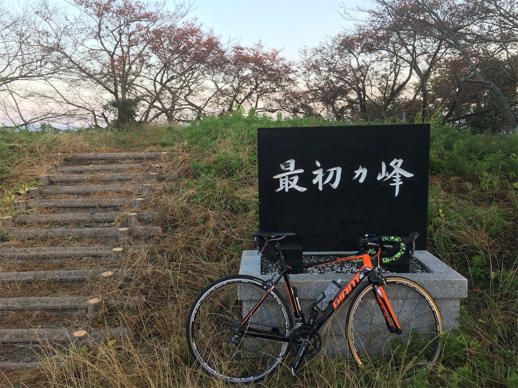 f:id:ichigoyoukan:20161114075113j:image