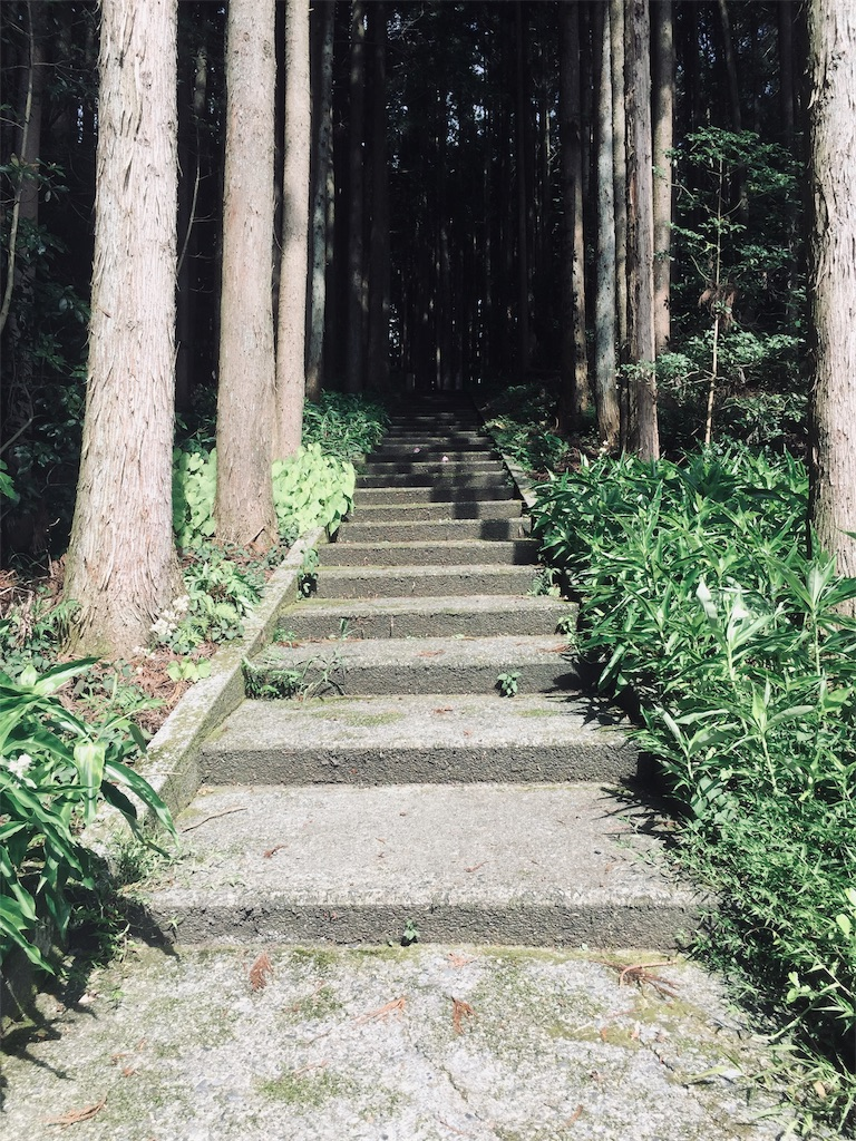 f:id:ichijiku0801:20190810004108j:image