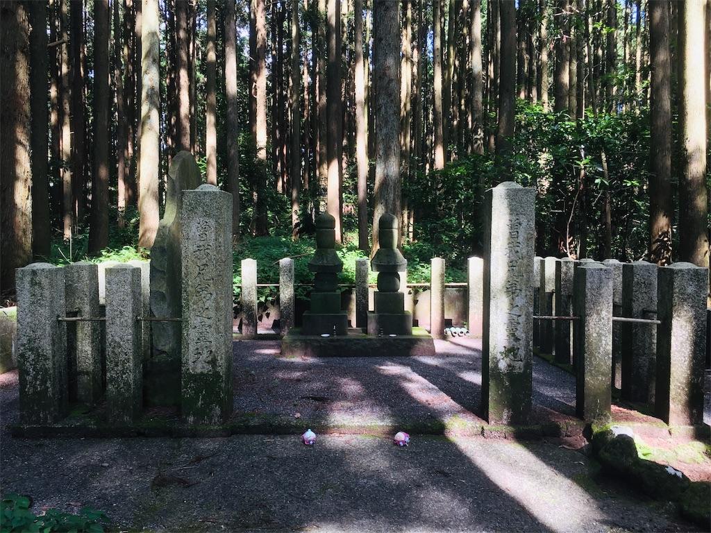 f:id:ichijiku0801:20190810004224j:image