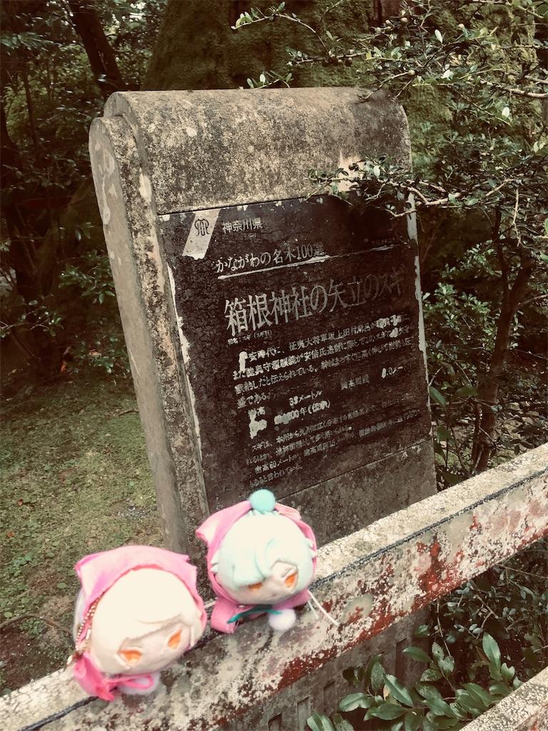 f:id:ichijiku0801:20190811004612j:image