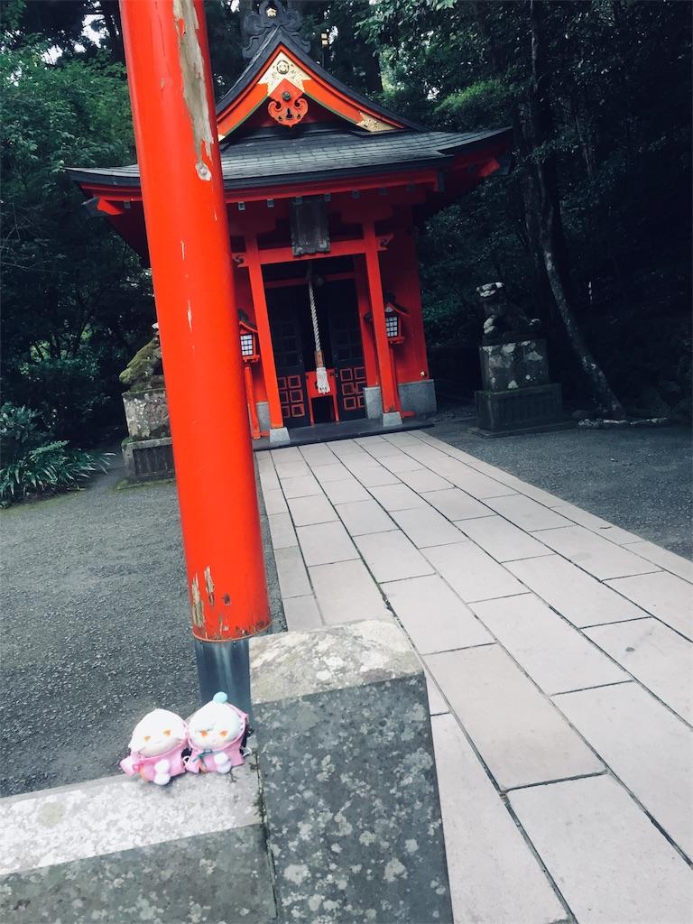 f:id:ichijiku0801:20190811005618j:image