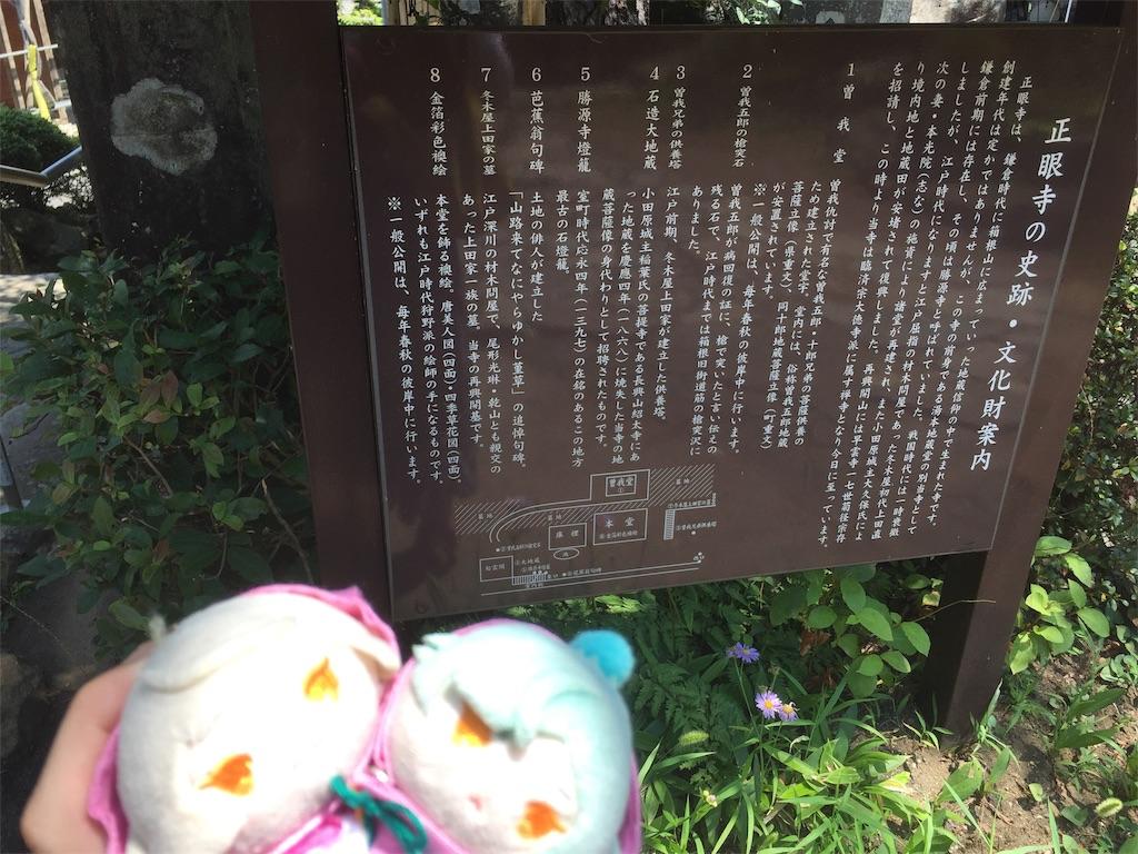 f:id:ichijiku0801:20190820125905j:image