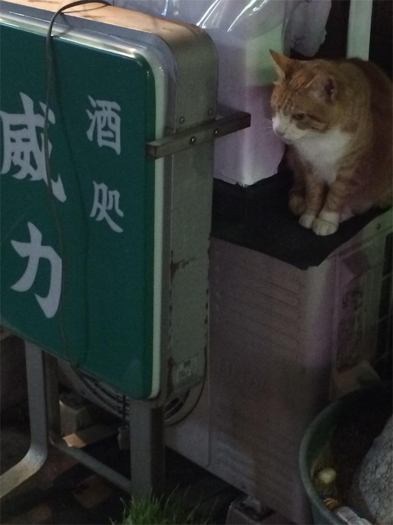 f:id:ichijiku27:20170412004427j:image