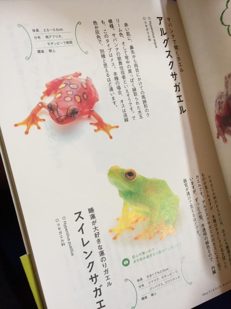f:id:ichikawa-papa:20160703211414j:plain