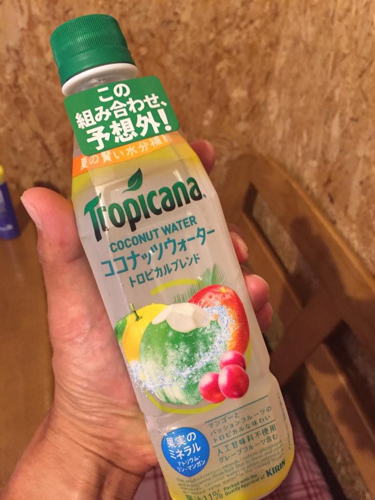 f:id:ichikawa-papa:20160704131828j:plain