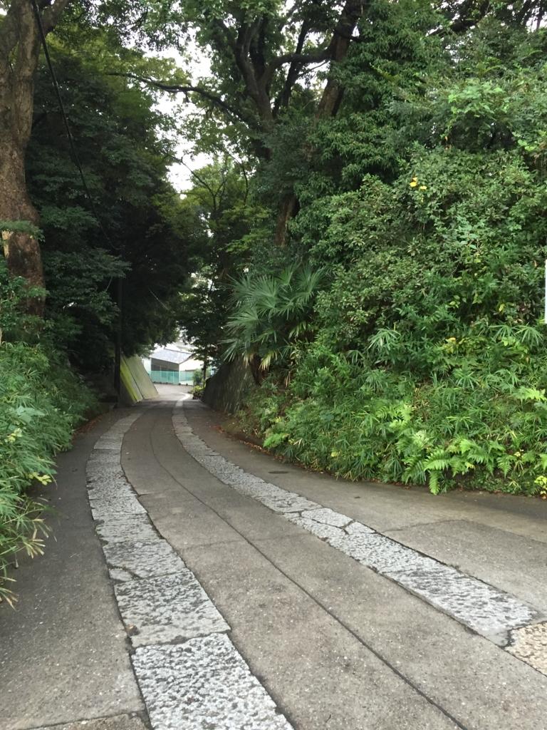 f:id:ichikawa-papa:20161029194224j:plain