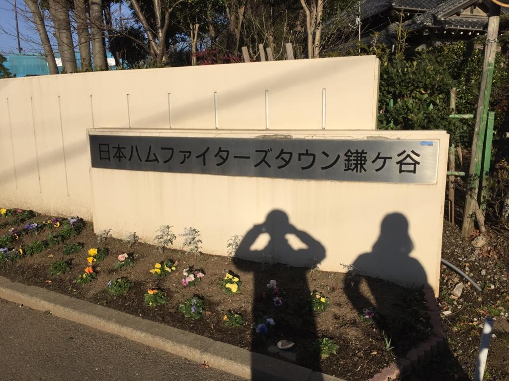 f:id:ichikawa-papa:20170115195334j:plain