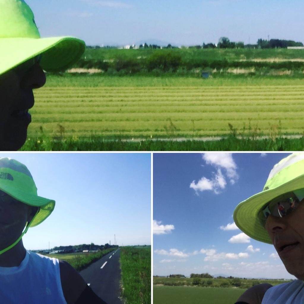 f:id:ichikawa-papa:20170425214517j:plain