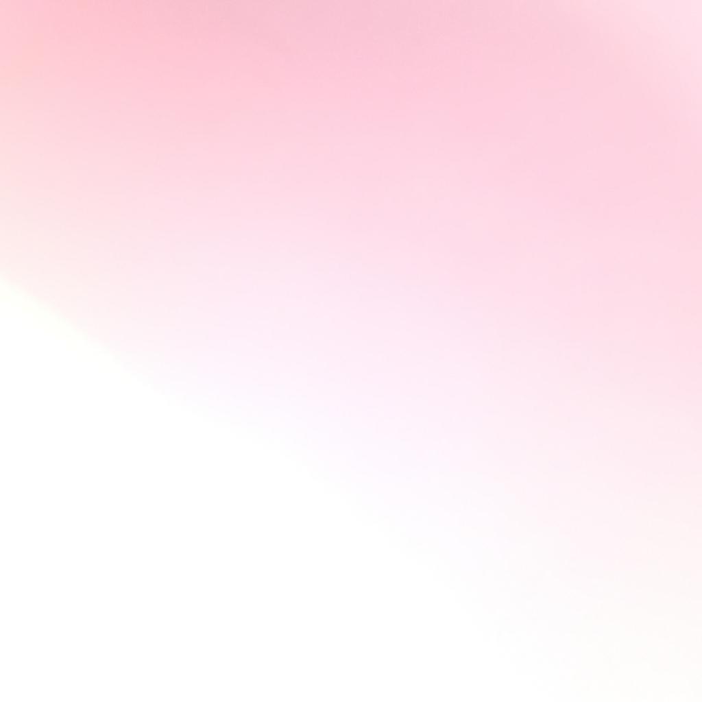 f:id:ichikawa-papa:20170607132653j:plain
