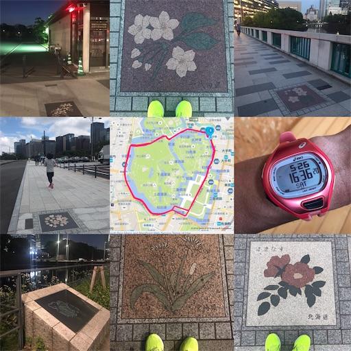 f:id:ichikawa-papa:20180526174118j:image