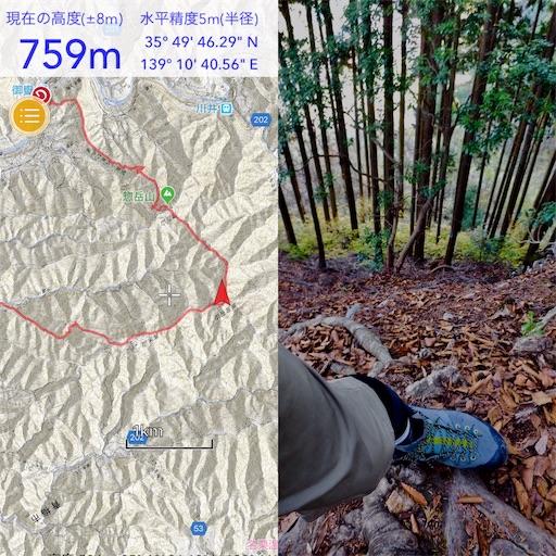 f:id:ichikawa-papa:20181118120903j:image
