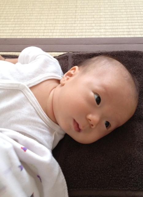 f:id:ichikawa-seipanten:20120906125330j:image:w400