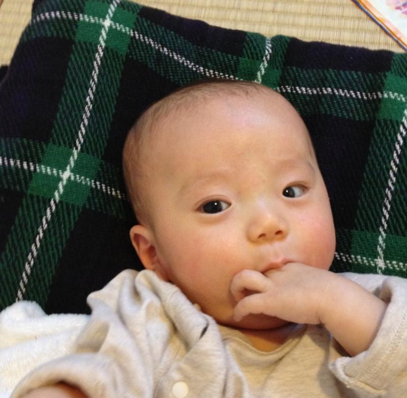 f:id:ichikawa-seipanten:20121116155106j:image:w400