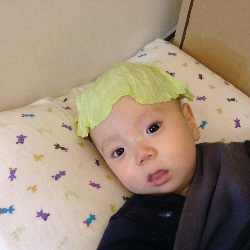 f:id:ichikawa-seipanten:20130228135418j:image:w350