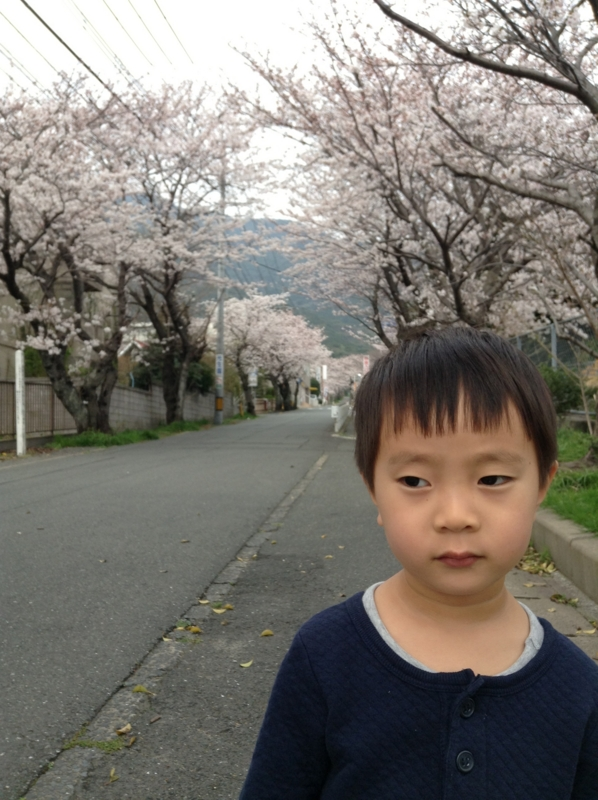 f:id:ichikawa-seipanten:20130324162236j:image:w450