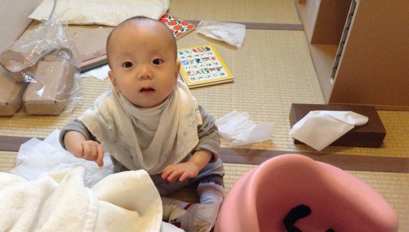f:id:ichikawa-seipanten:20130427203820j:image:w360