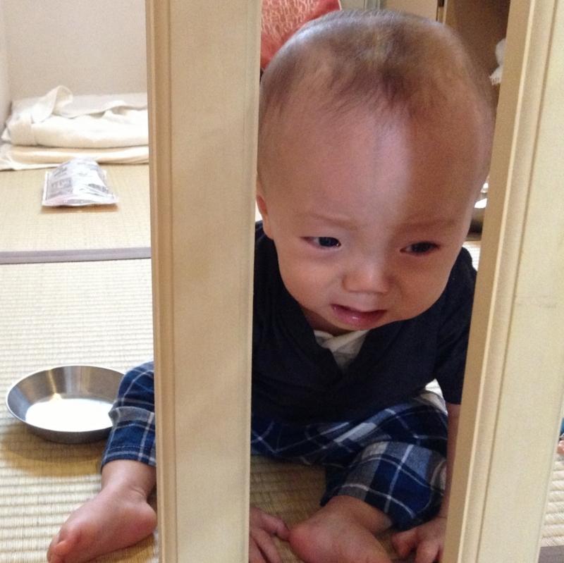 f:id:ichikawa-seipanten:20130607095413j:image:w200