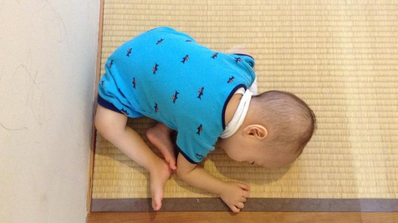 f:id:ichikawa-seipanten:20130920092924j:image:w300