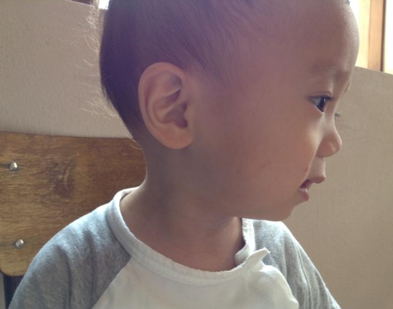 f:id:ichikawa-seipanten:20140807152231j:image:w400