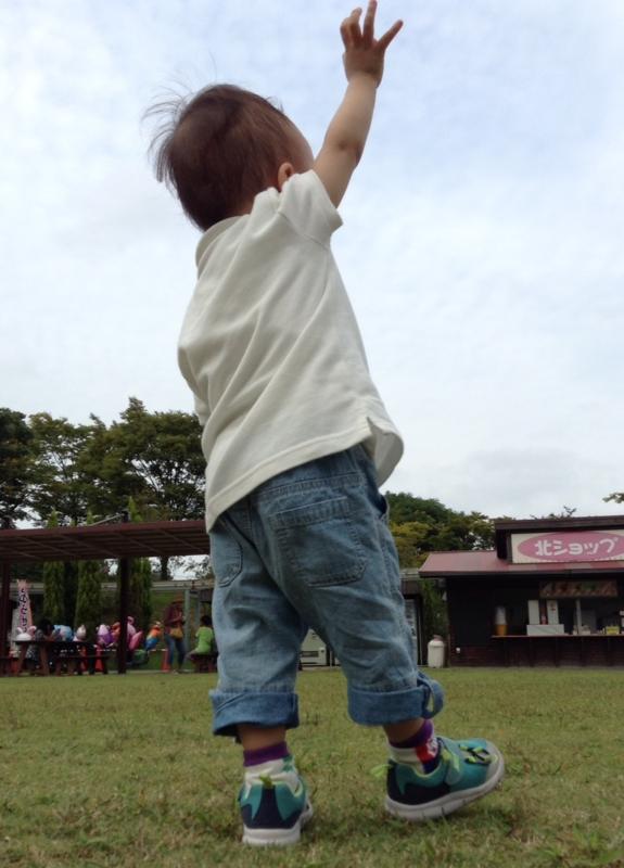f:id:ichikawa-seipanten:20140915150521j:image:w400