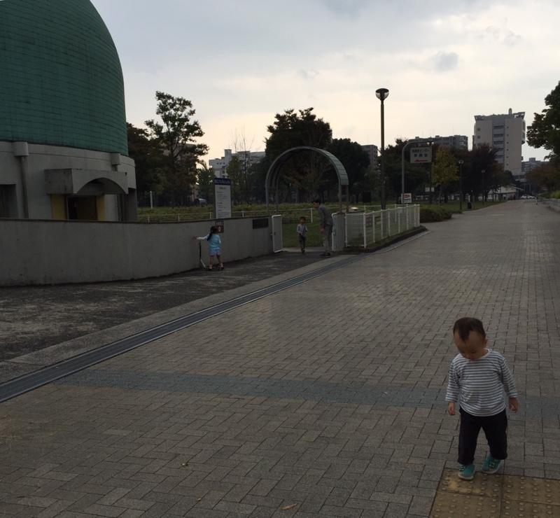 f:id:ichikawa-seipanten:20141021194344j:image:w420