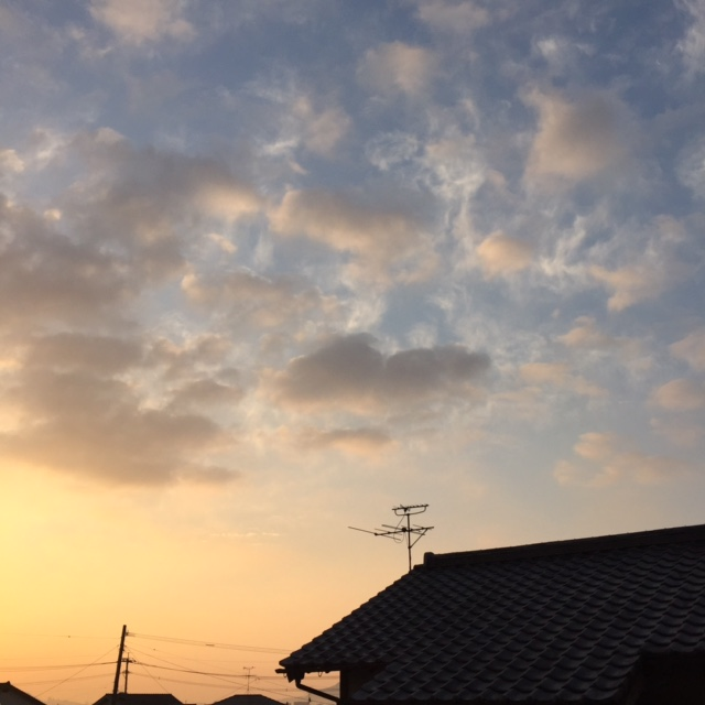 f:id:ichikawa-seipanten:20150116074543j:image:w230