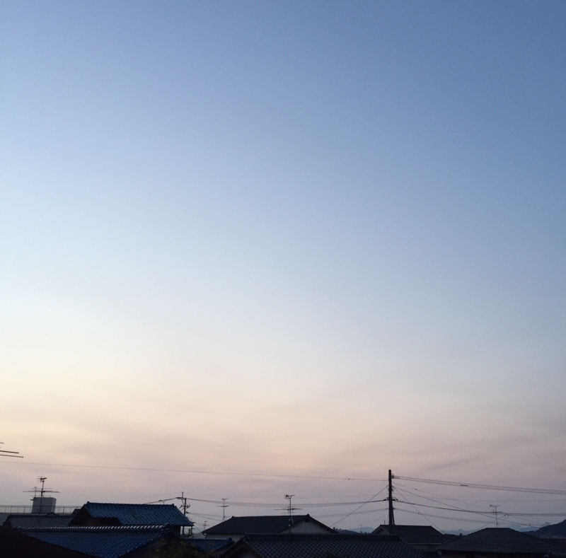 f:id:ichikawa-seipanten:20150313062434j:image:w600