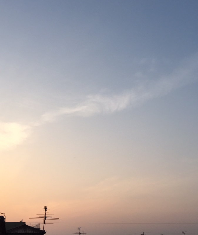 f:id:ichikawa-seipanten:20150423055417j:image:w500