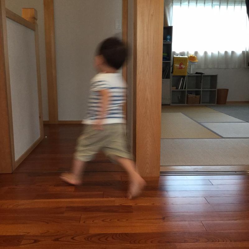 f:id:ichikawa-seipanten:20150528175116j:image:w300