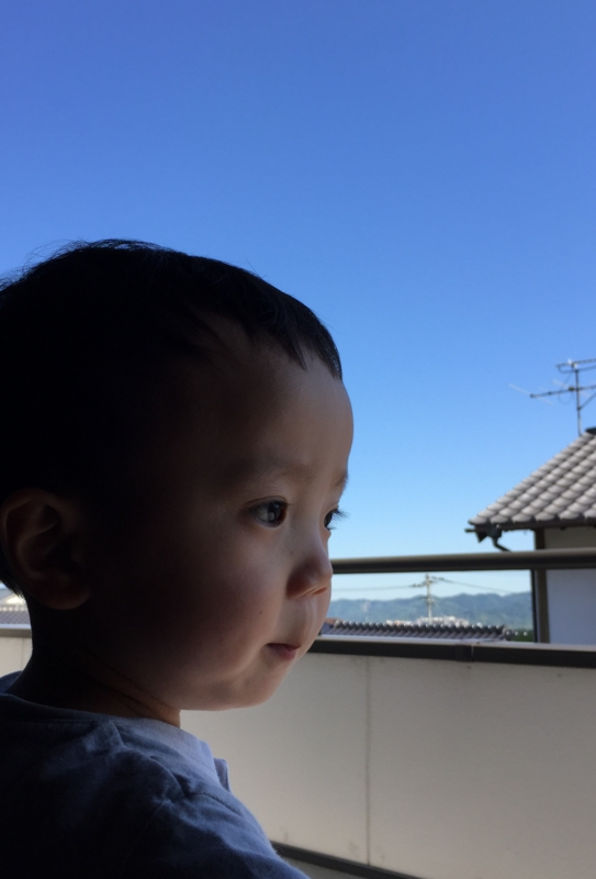f:id:ichikawa-seipanten:20150604160106j:image:w420